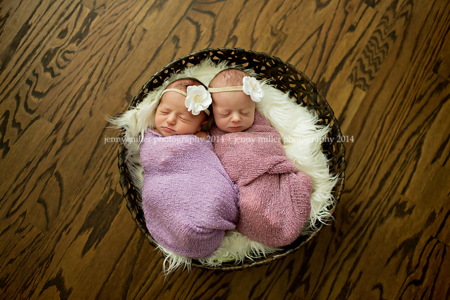houston premier newborn photographer