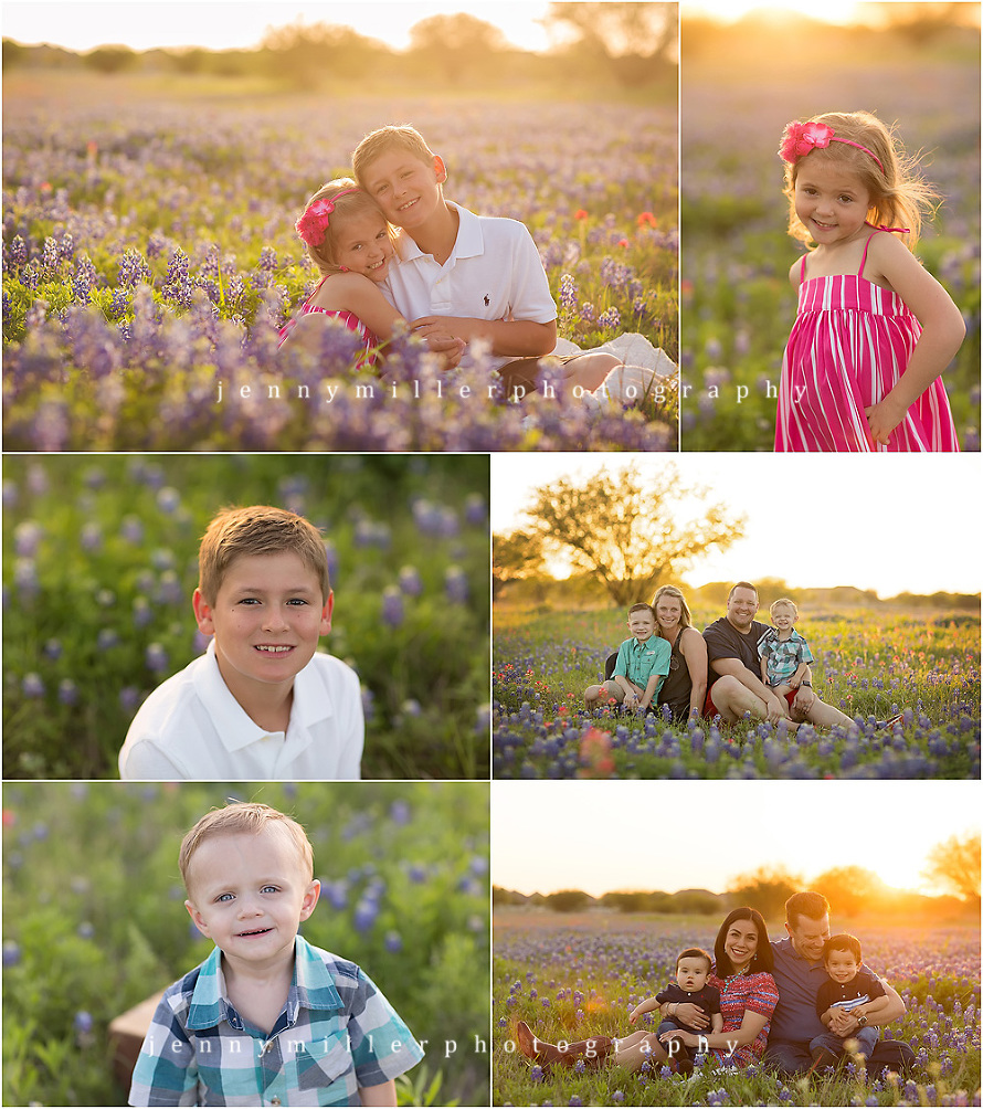 san antonio bluebonnet mini sessions | Jenny Miller Photography | www.jennymillerphoto.com